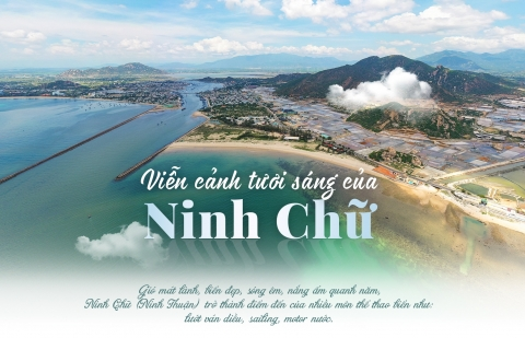vien canh tuoi sang cua ninh chu