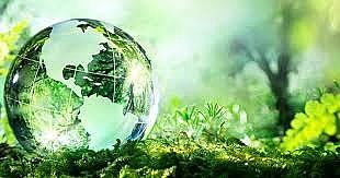 Hoàn thiện các quy định của pháp luật về đầu tư và bảo vệ môi trường