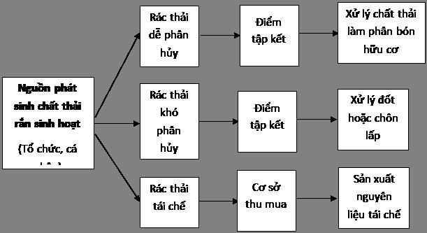 mo hinh quan ly phan loai chat thai ran thu gom tai nguon
