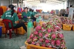 doanh nghiep can lam gi de khai thac loi the xuat khau chinh ngach