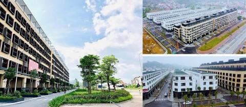 IDJ Việt Nam, lợi nhuận quý 3/2021 gấp ba lần cùng kỳ so với năm 2020.