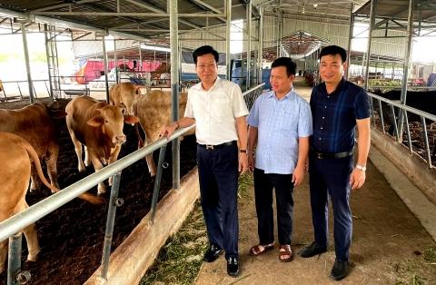 Bình Lục tạo bước đột phá trong sản xuất nông nghiệp