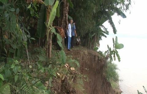 Phú Thọ: Liên tiếp xảy ra sạt lở bờ sông Thao